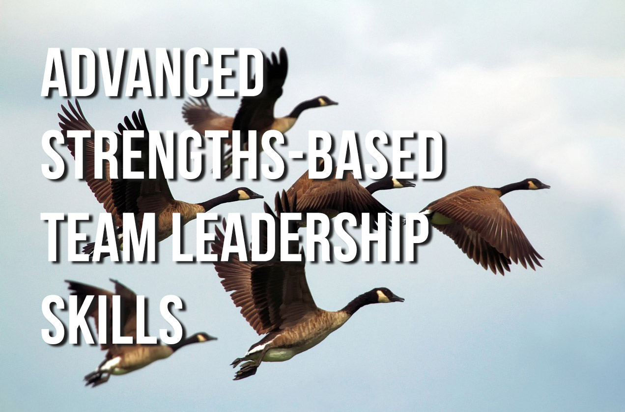 Strengths-Based Leadership strengthsfinder singapore strengthsfinder asia coach consultants coaching mentoring leadership strengths based leadership personal branding managerial supervisory